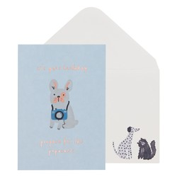 A6 GREETING CARD BIRTHDAY PUPARAZZI PALE BLUE: GREETING CARDS