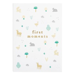 FIRST MOMENTS CARDS  MULTI: CELEBRATION