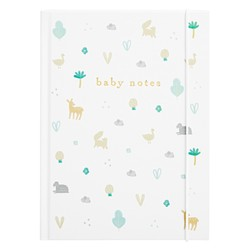 BABY NOTES MULTI: CELEBRATION